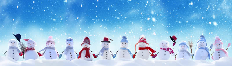 Merry Christmas - Seasons Greetings from Acorn Internet Services, Inc.