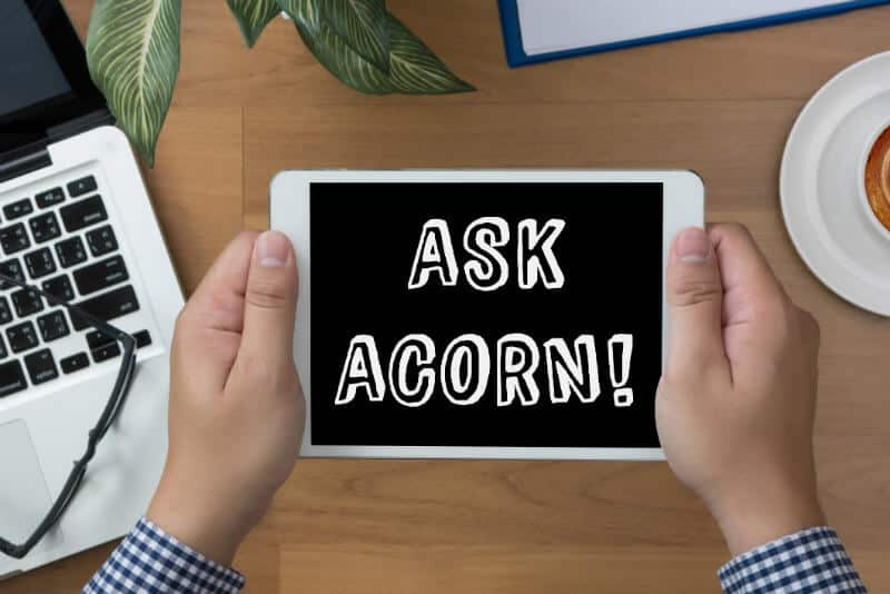"Man's hands holding a tablet that says ""Ask Acorn!"" at a desk"