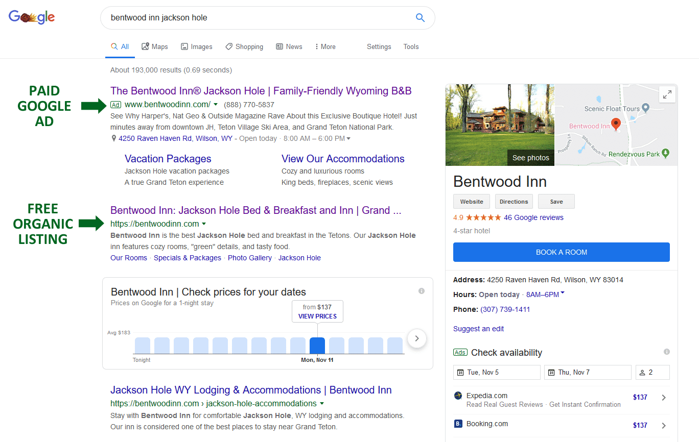 Snapshot of Google Ad and Organic listing